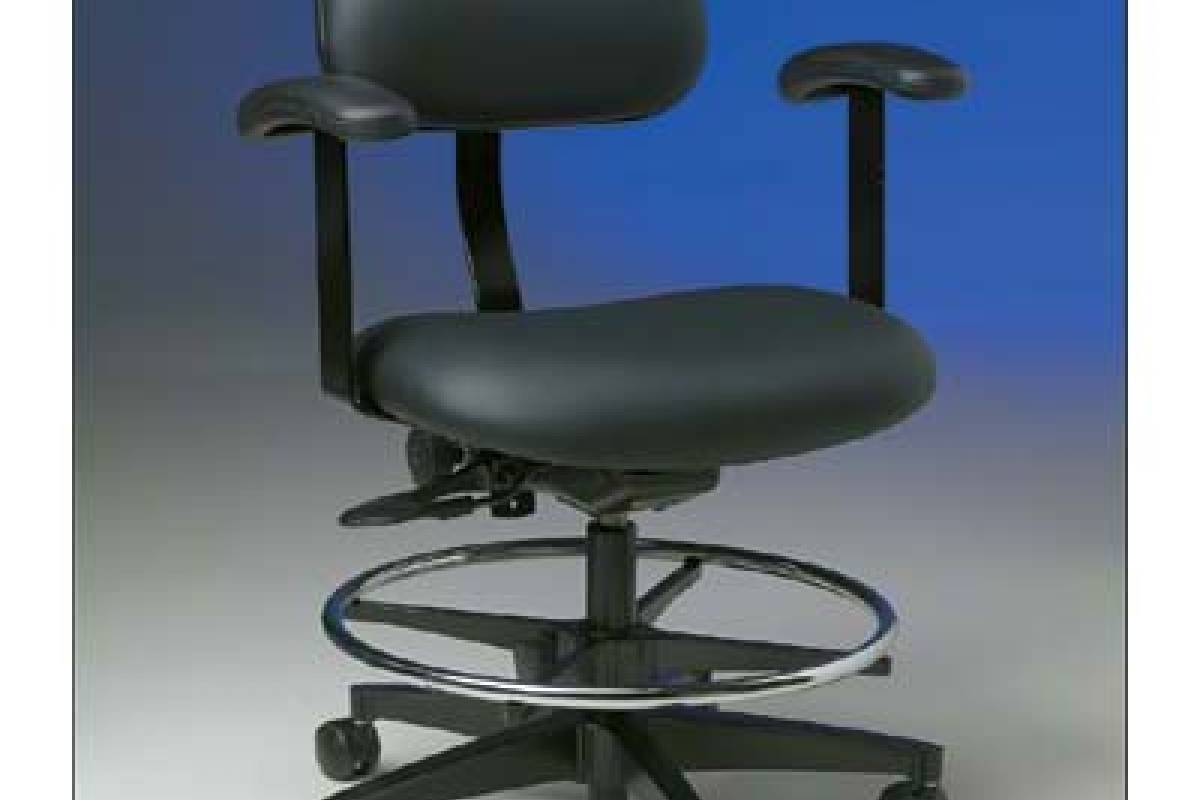 Ergonomic Chair with Armrests