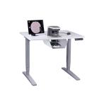 Rebel True-Ergo Table with Rebel Microscope